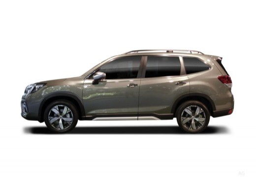 Forester Laterale Sinistra